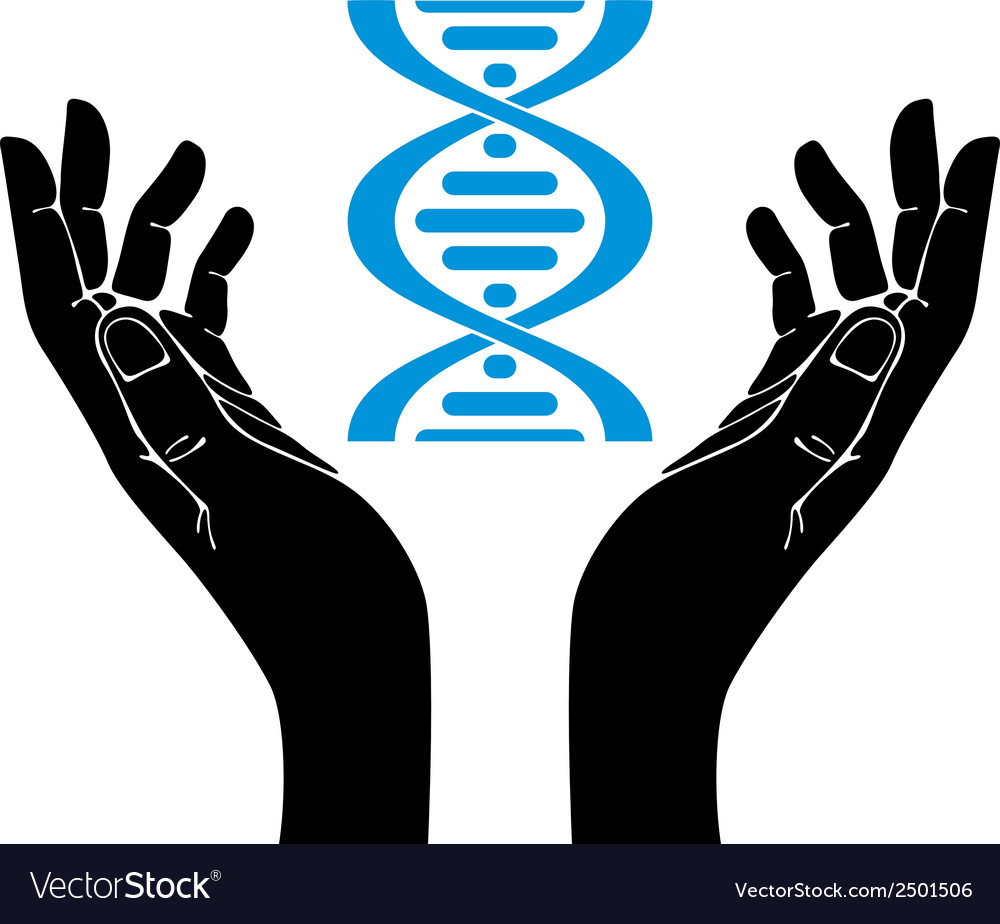 Hands holding dna strand symbol vector | Price: 1 Credit (USD $1)