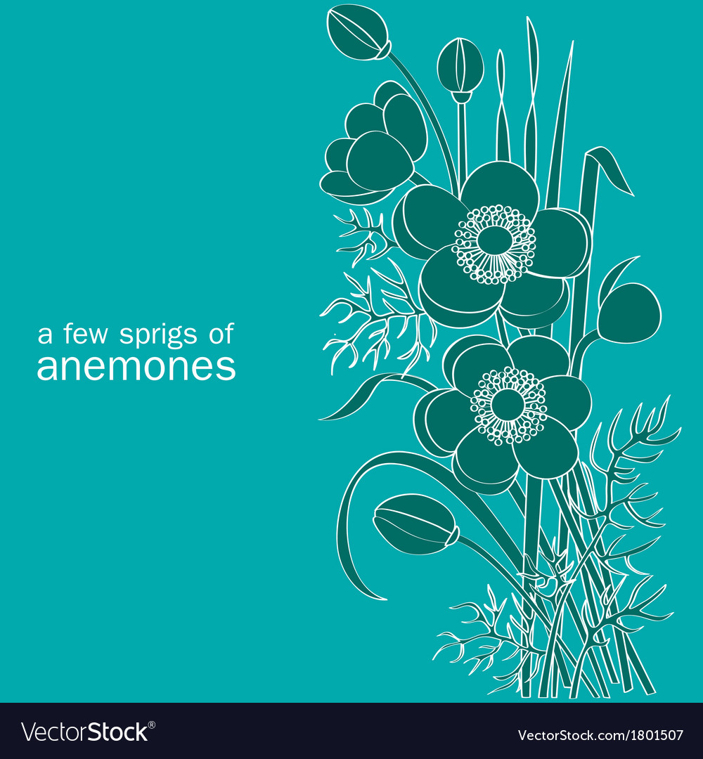 A few sprigs of anemones vector | Price: 1 Credit (USD $1)
