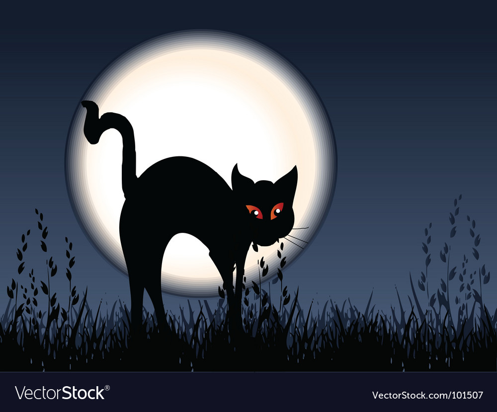 Scared cat vector | Price: 1 Credit (USD $1)