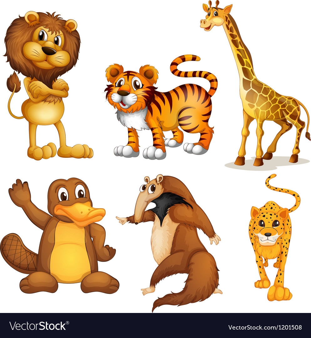 Different kinds of land animals vector | Price: 1 Credit (USD $1)
