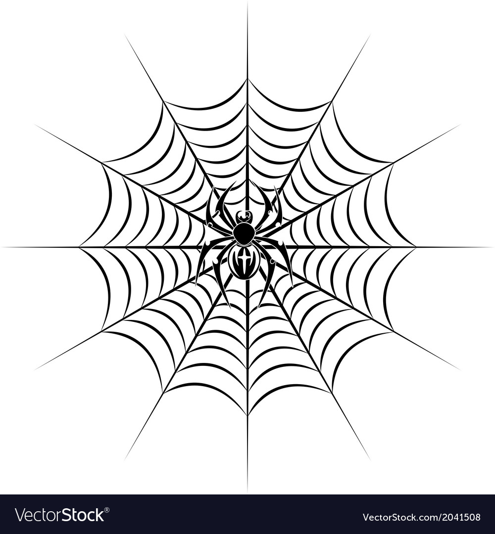 Spider on web vector | Price: 1 Credit (USD $1)