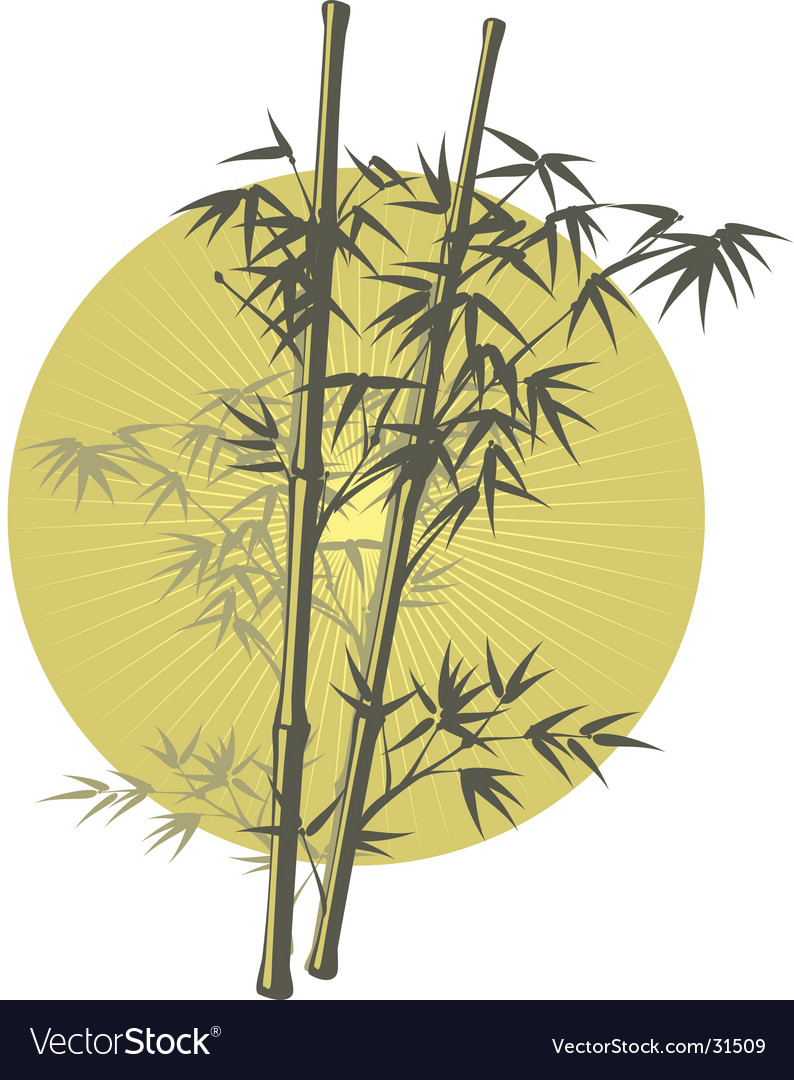 Asian bamboo illustration vector | Price: 1 Credit (USD $1)