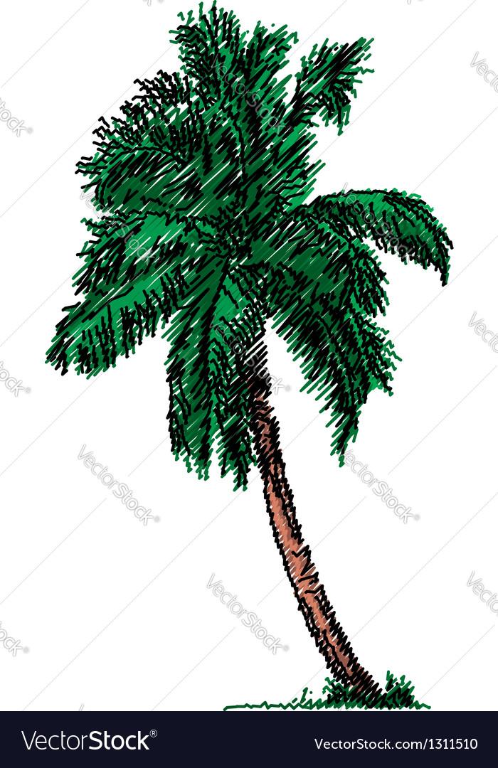 Sketch of a tree vector | Price: 1 Credit (USD $1)