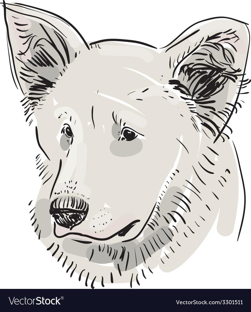 Head muzzle the dog shepherd sketch drawing black vector | Price: 1 Credit (USD $1)