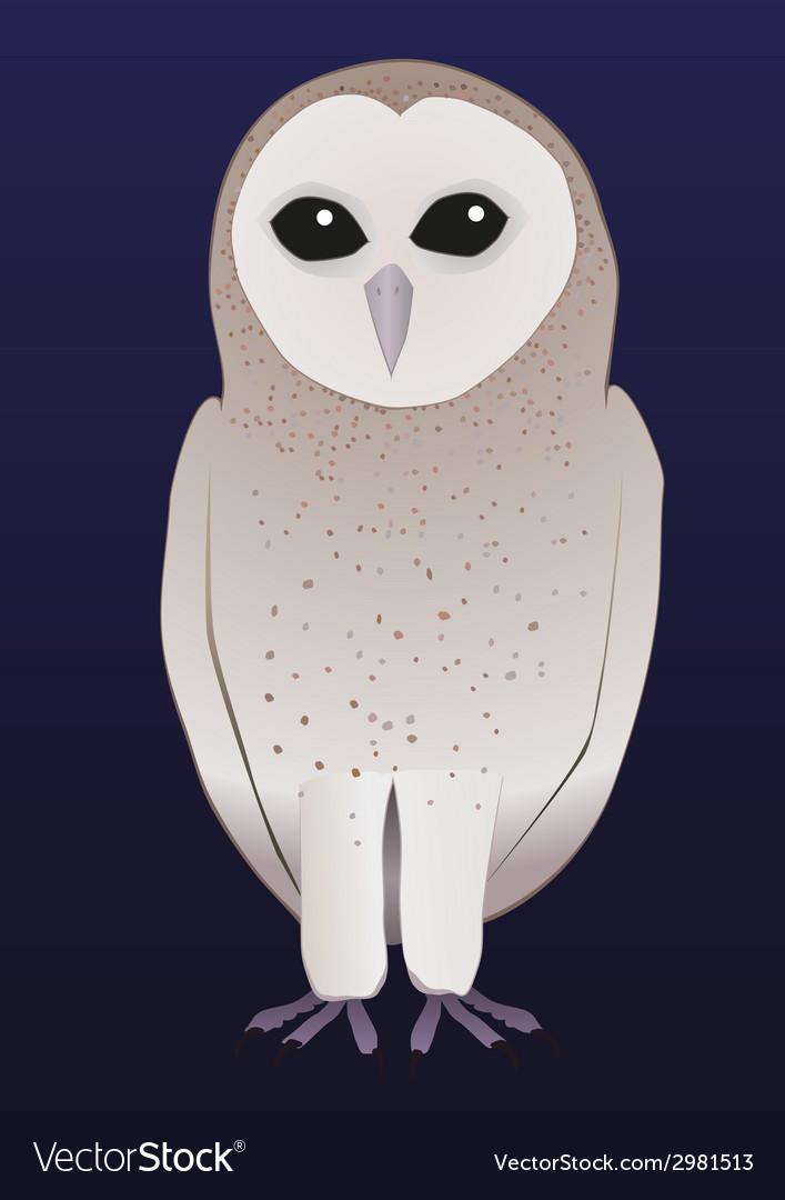 Barn owl vector | Price: 1 Credit (USD $1)