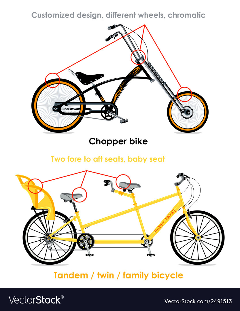 Bicycle types set iii vector | Price: 1 Credit (USD $1)