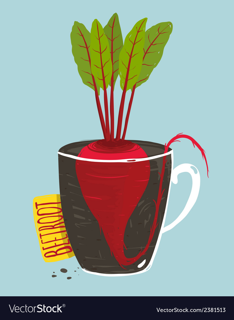 Growing beetroot with green leafy top in mug vector | Price: 1 Credit (USD $1)