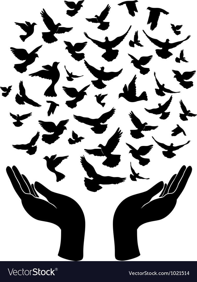 Hands releasing peace pigeon vector | Price: 1 Credit (USD $1)