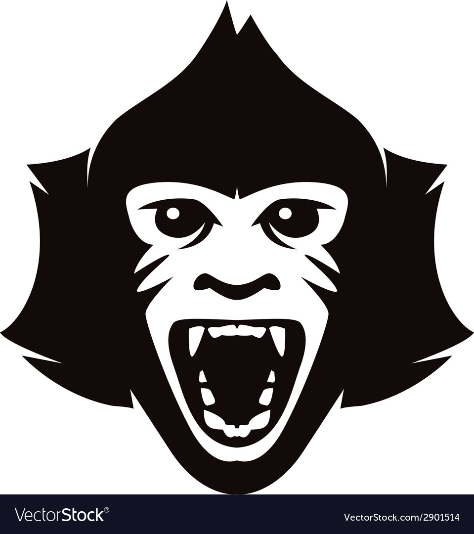 Head of monkey vector | Price: 1 Credit (USD $1)