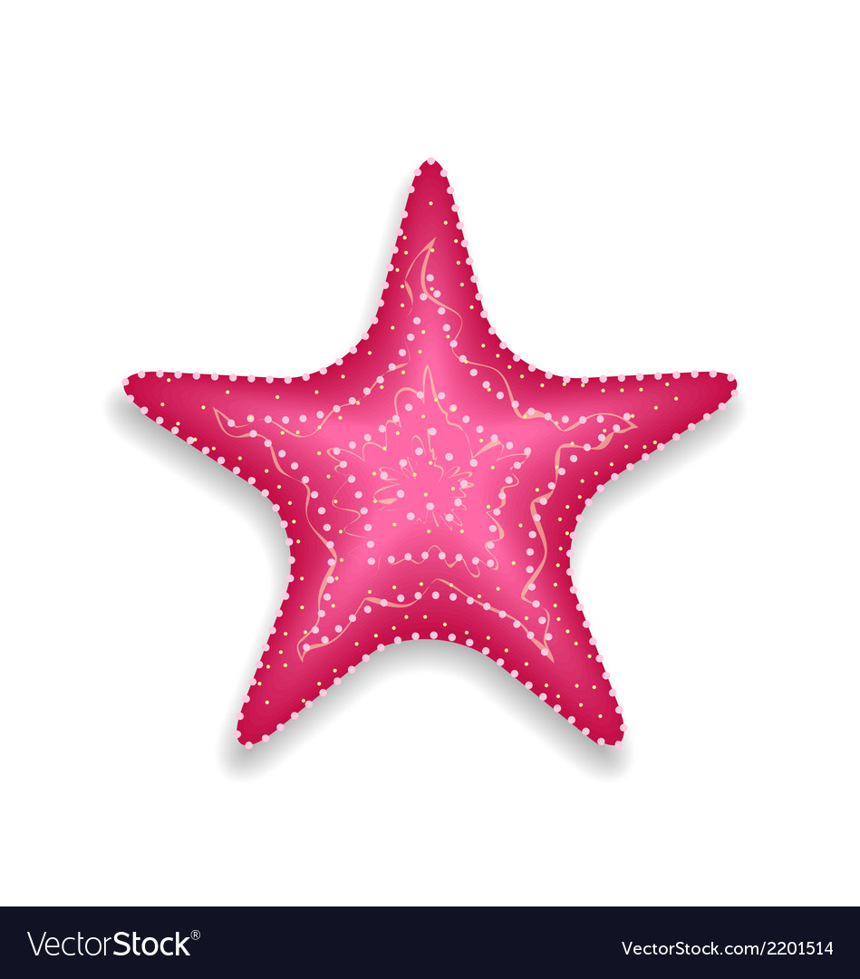 Pink starfish isolated on white background vector | Price: 1 Credit (USD $1)