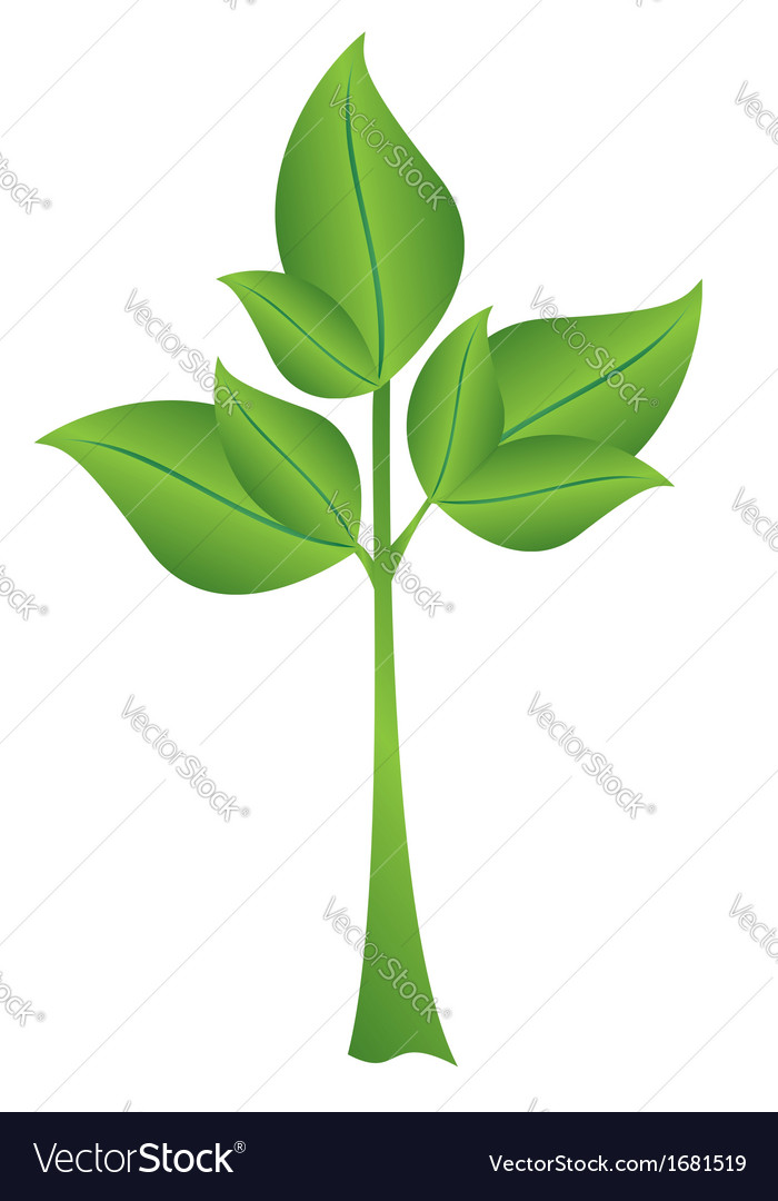 Small green plant vector | Price: 1 Credit (USD $1)