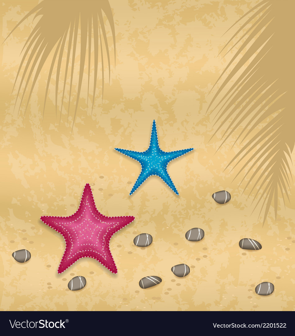 Sand background with starfishes and pebble stones vector | Price: 1 Credit (USD $1)