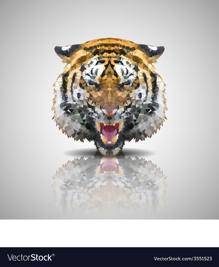 Low poly design tiger vector | Price: 1 Credit (USD $1)