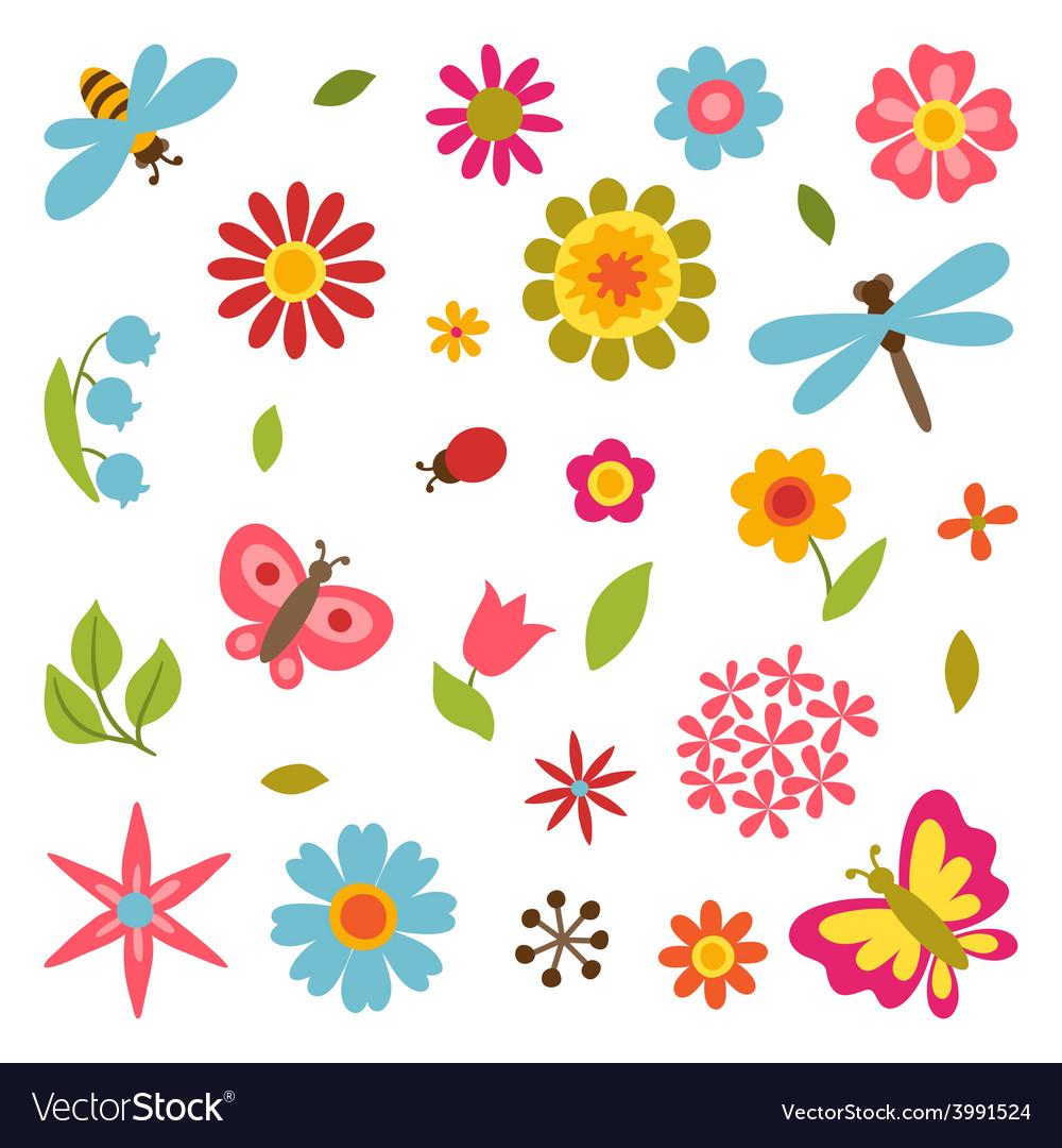 Natural set of beautiful flowers beetles and vector | Price: 1 Credit (USD $1)