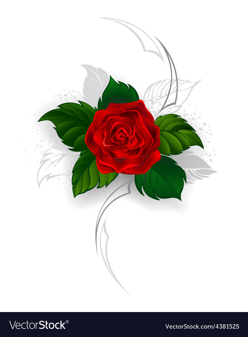 Blooming red rose vector | Price: 1 Credit (USD $1)
