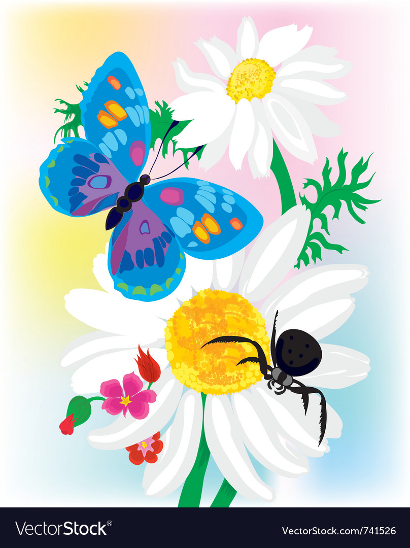 Bouquet of camomiles vector   Price: 1 Credit (USD $1)