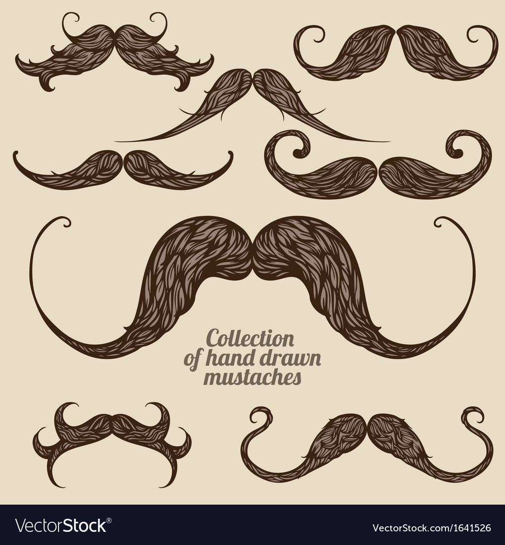 Mustaches vector | Price: 1 Credit (USD $1)