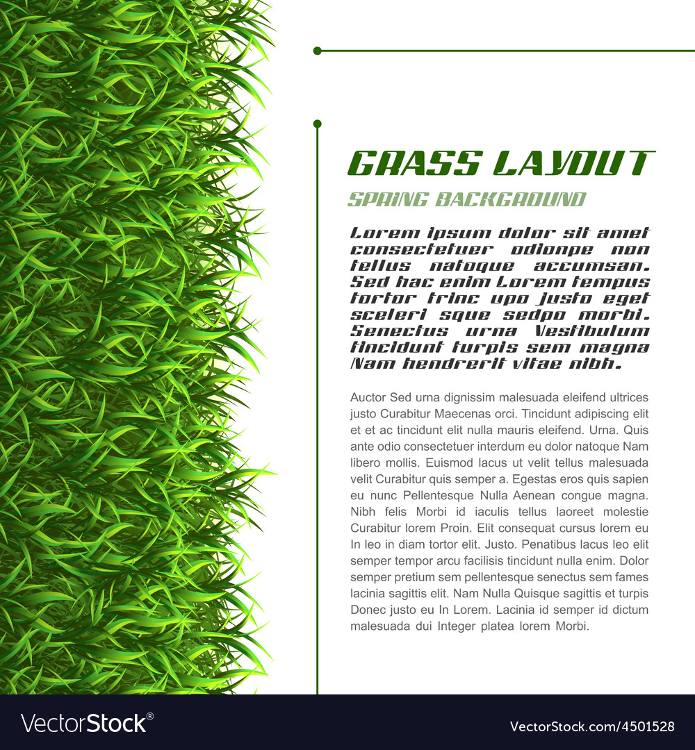 Grass layout vector | Price: 1 Credit (USD $1)