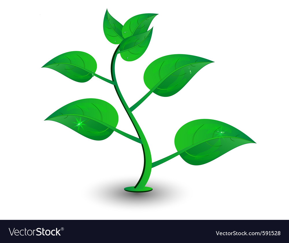 Green petal vector | Price: 1 Credit (USD $1)