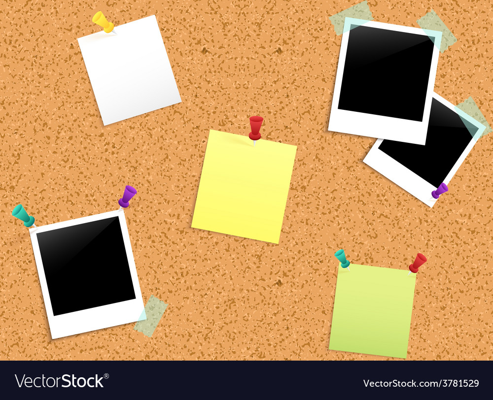 Cork notice board vector | Price: 1 Credit (USD $1)