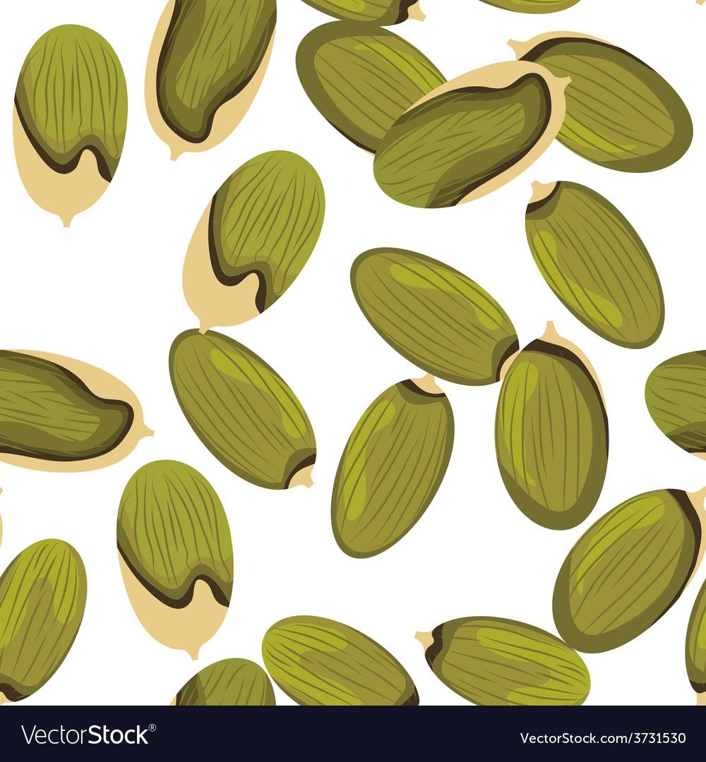 Pumpkin seeds vector | Price: 1 Credit (USD $1)