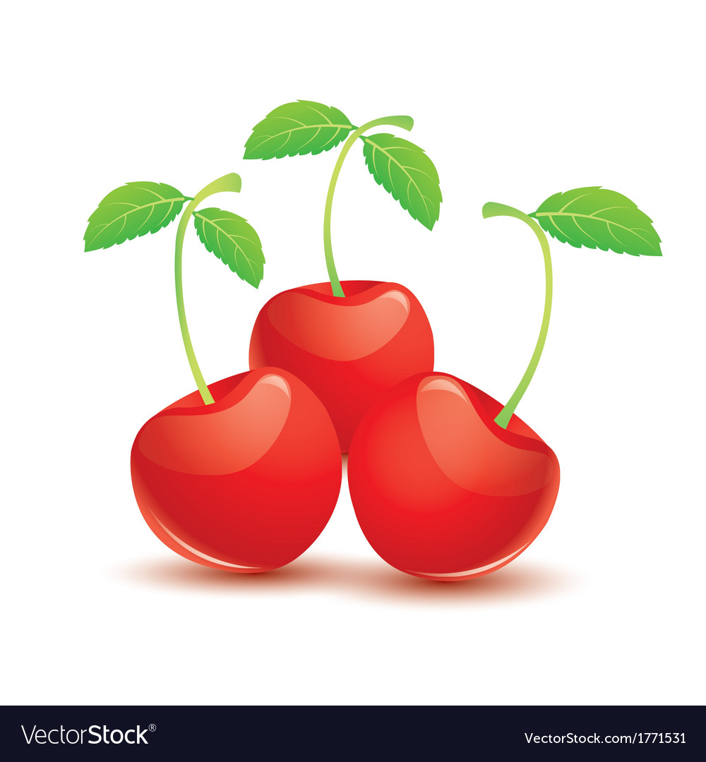 Ripe red cherry with leaves vector | Price: 1 Credit (USD $1)