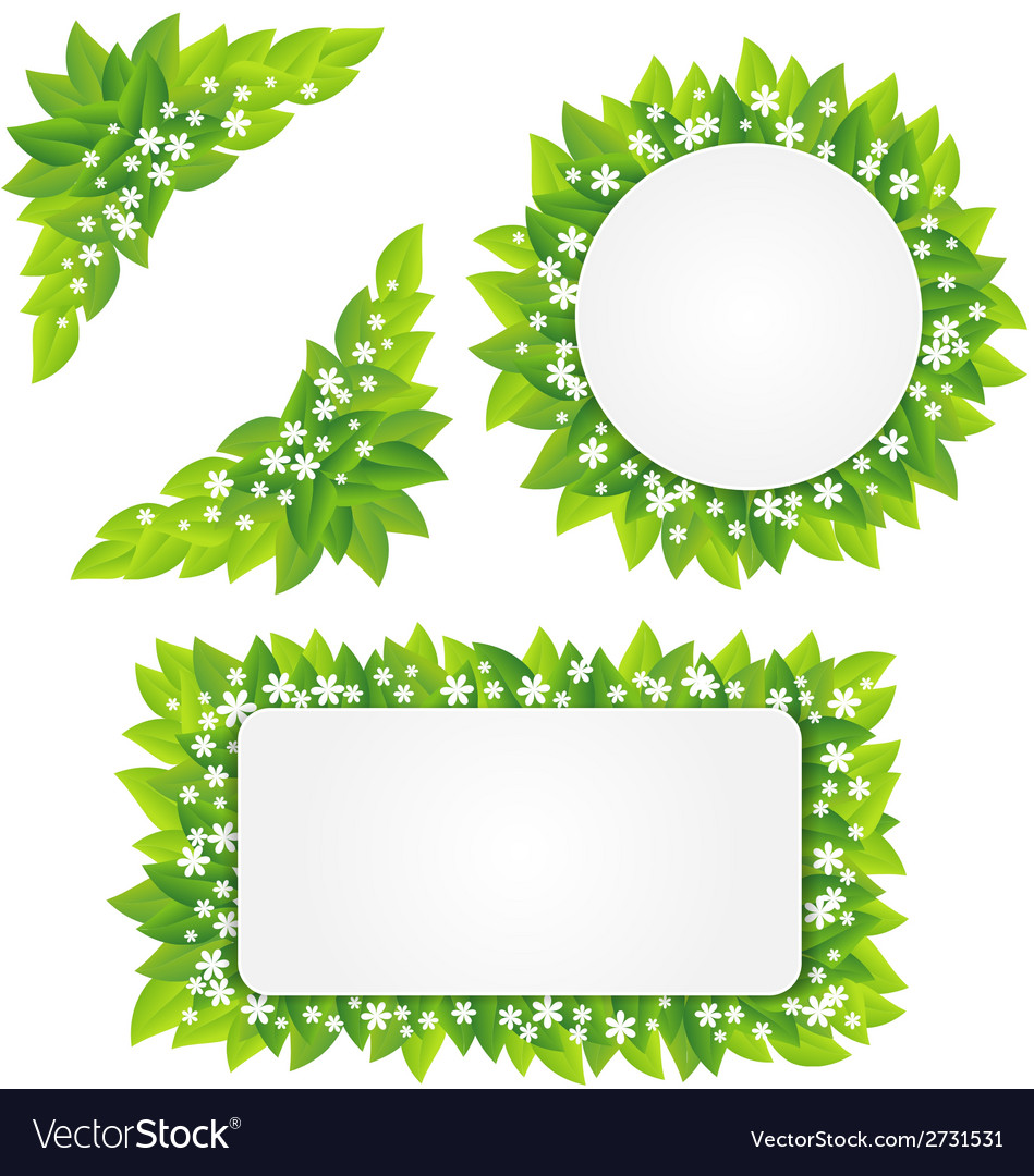 White flowers on green leaves frame vector | Price: 1 Credit (USD $1)