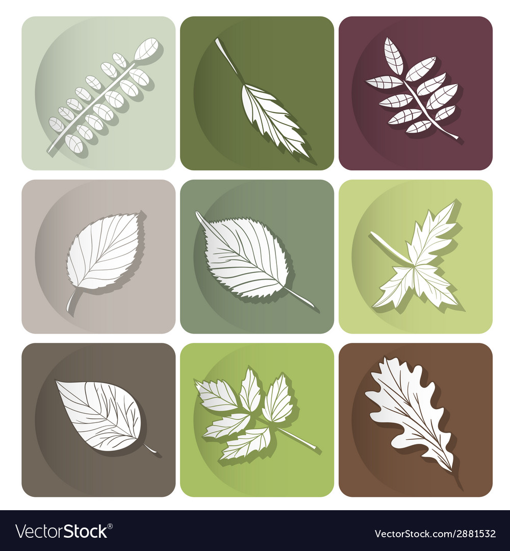 Leaves icon white silhouettes of leaves of forest vector | Price: 1 Credit (USD $1)