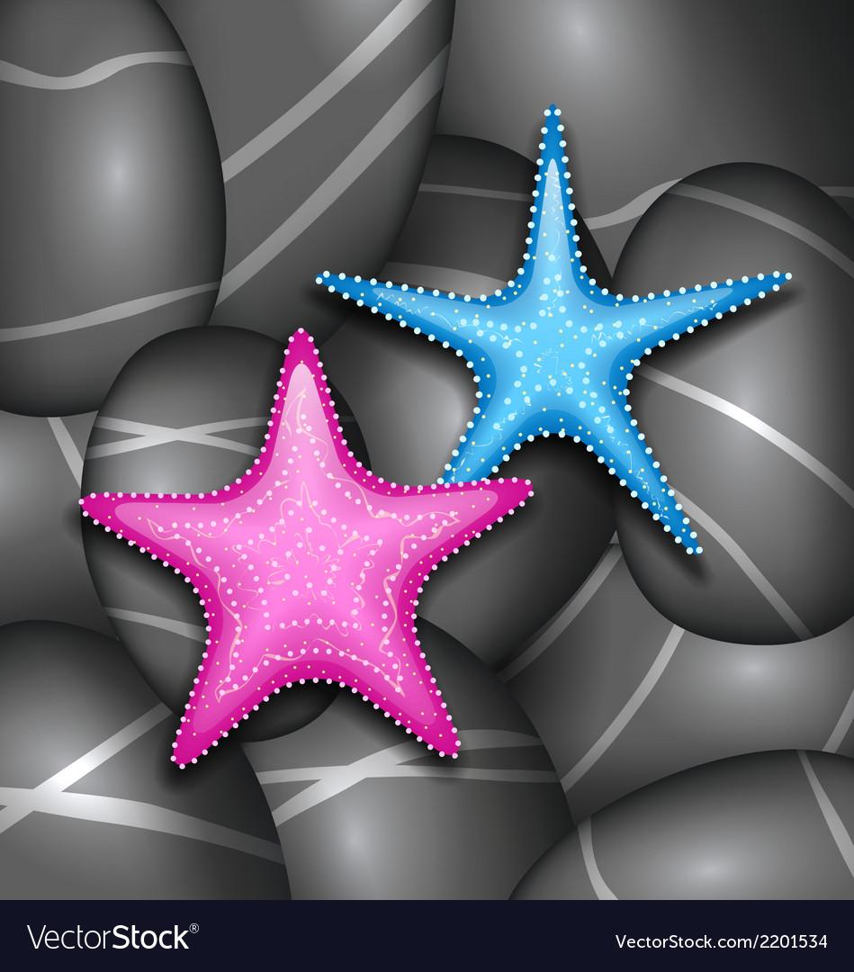 Starfishes among sea pebble stones vector   Price: 1 Credit (USD $1)