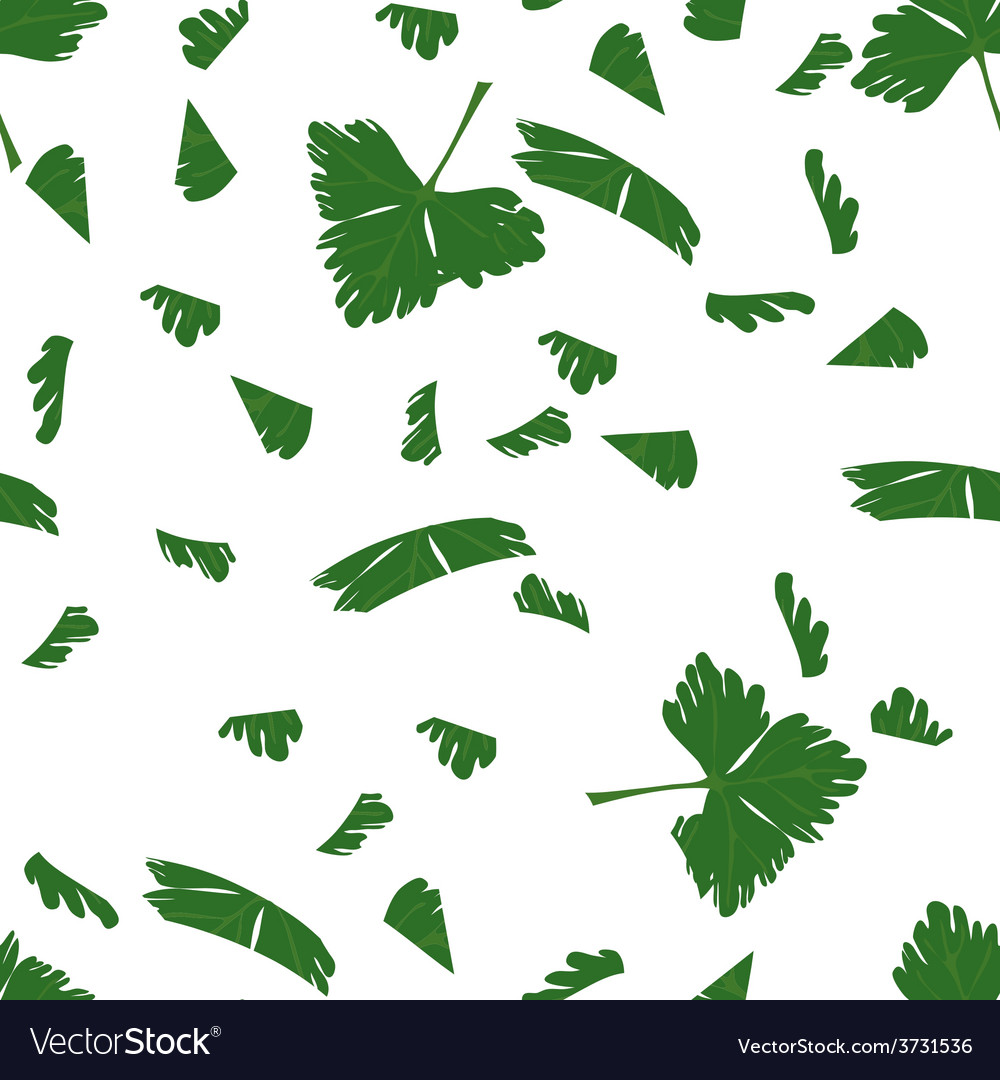 Chopped parsley vector | Price: 1 Credit (USD $1)