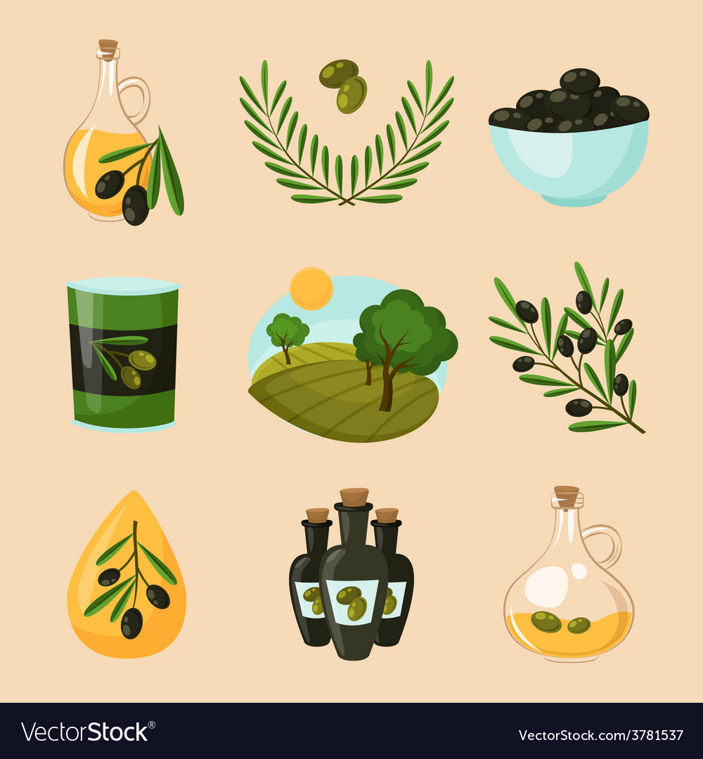 Olive icons set vector | Price: 1 Credit (USD $1)