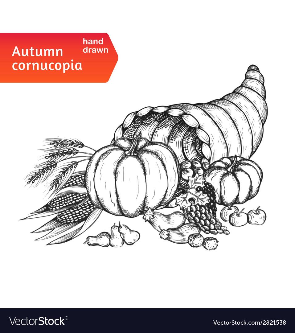 Cornucopia horn of plenty with autumn harvest vector | Price: 1 Credit (USD $1)