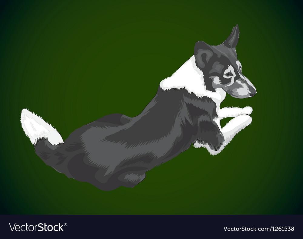 Lying big dog vector | Price: 1 Credit (USD $1)