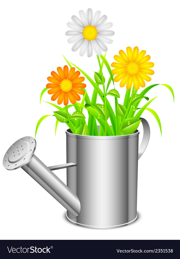 Watering can and flowers vector | Price: 1 Credit (USD $1)