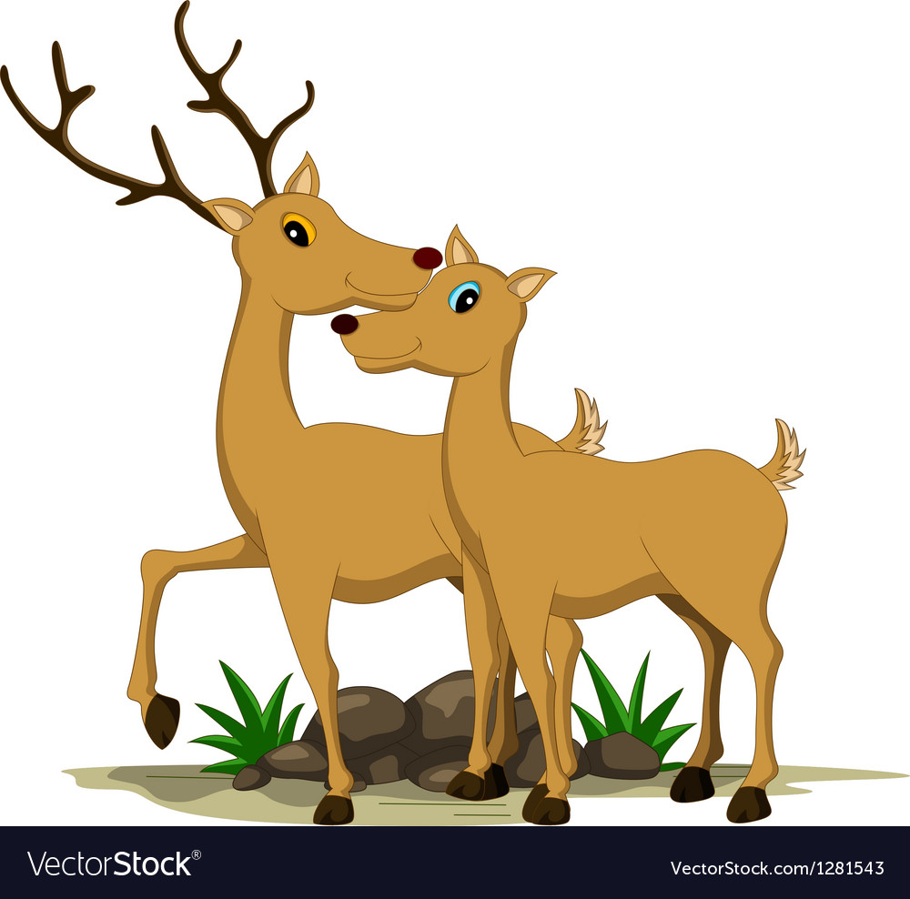 Cute couple deer cartoon vector | Price: 1 Credit (USD $1)