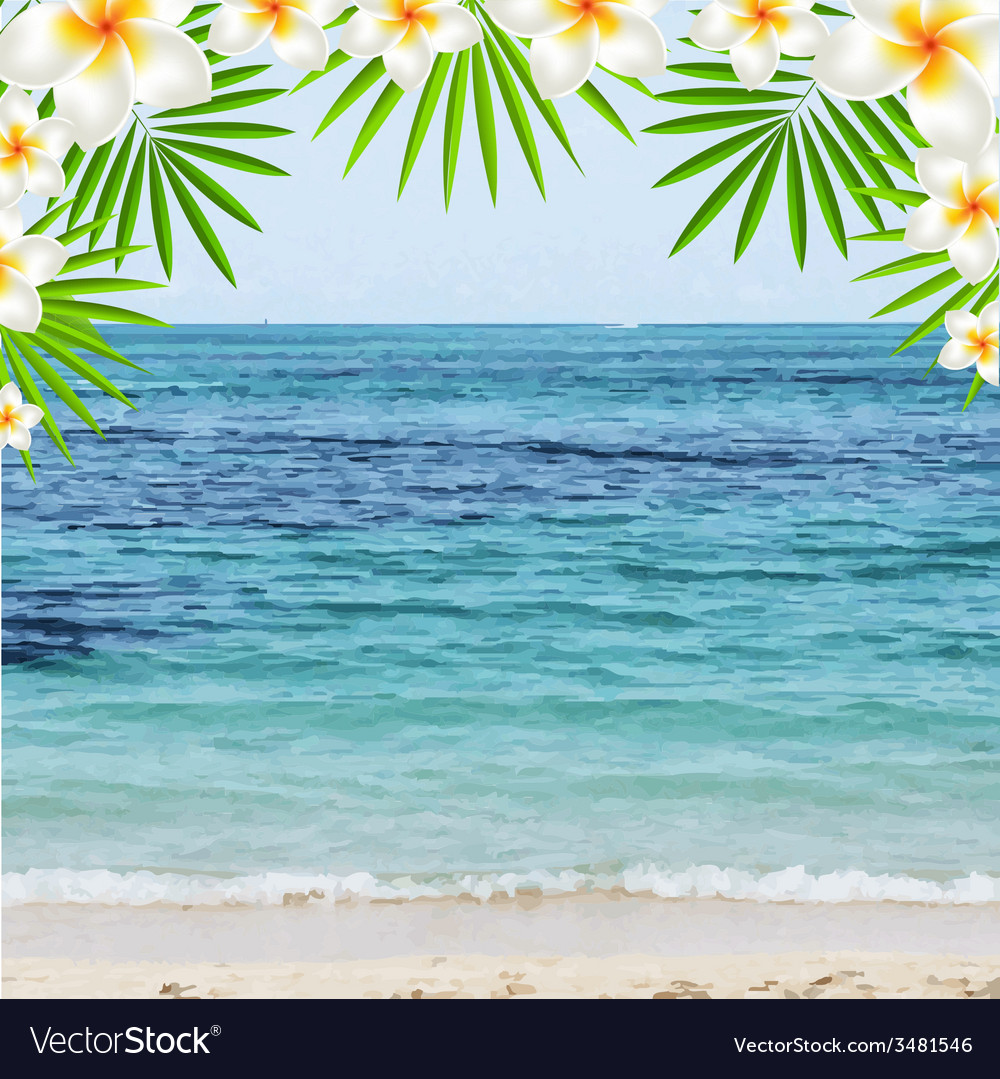 Summer time poster with frangipani vector | Price: 1 Credit (USD $1)