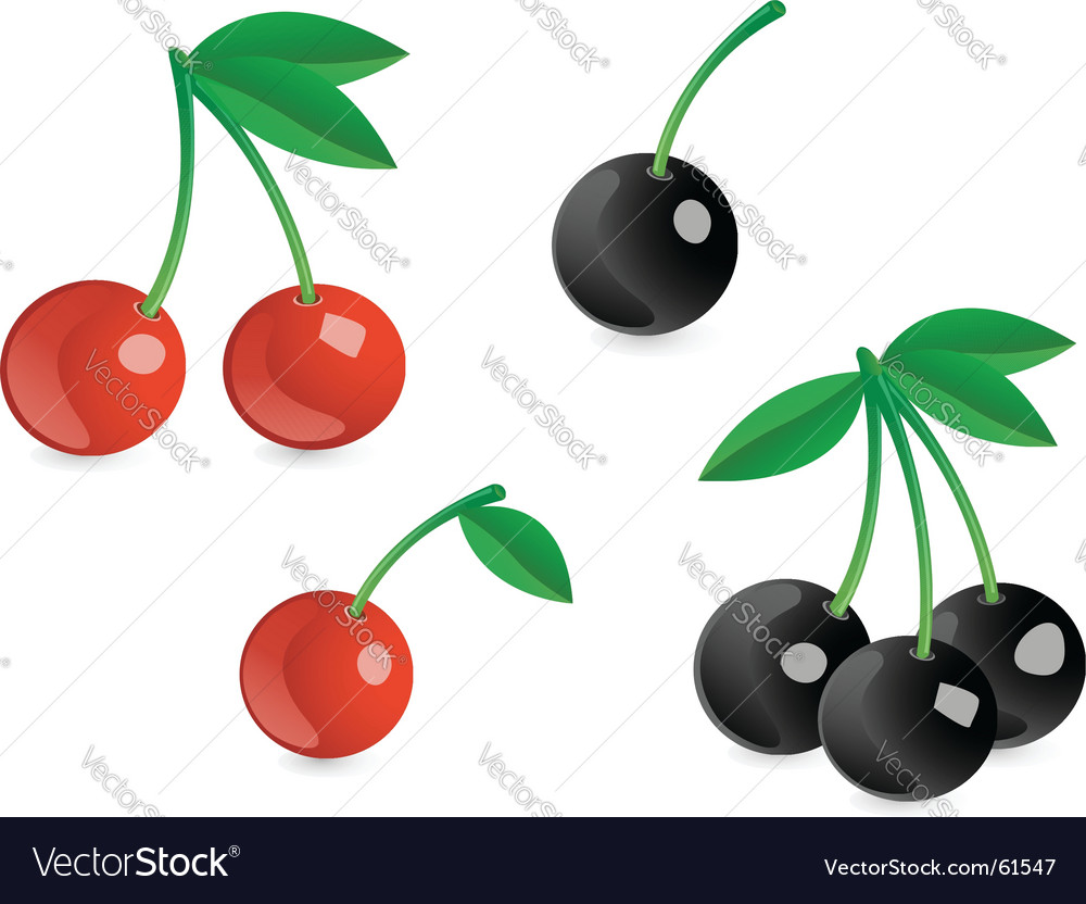 Appetizing berries vector | Price: 1 Credit (USD $1)