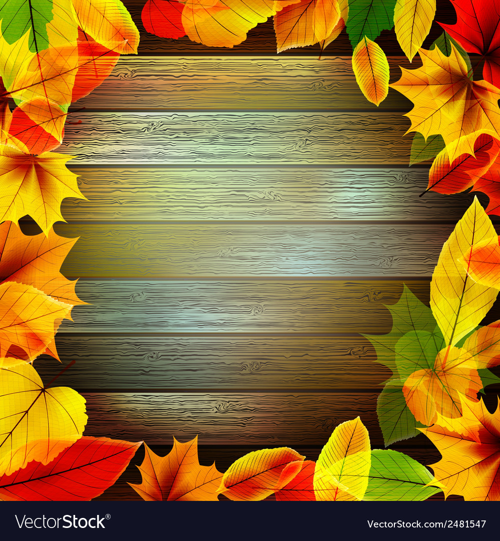 Yellow wet autumn leaves on the background eps10 vector | Price: 1 Credit (USD $1)