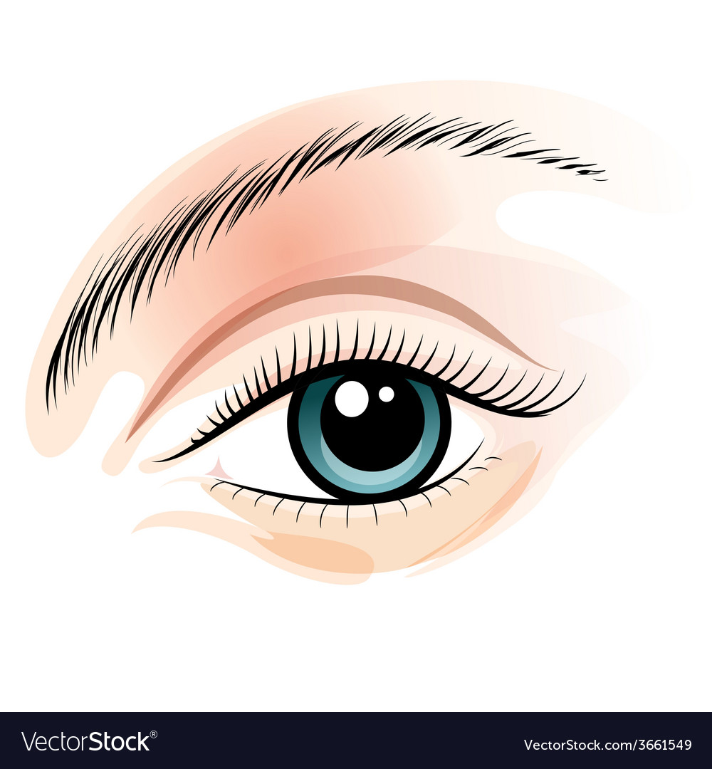 Female eye vector | Price: 1 Credit (USD $1)