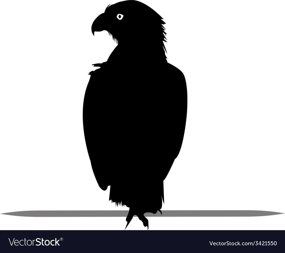 Silhouette of eagle black vector   Price: 1 Credit (USD $1)