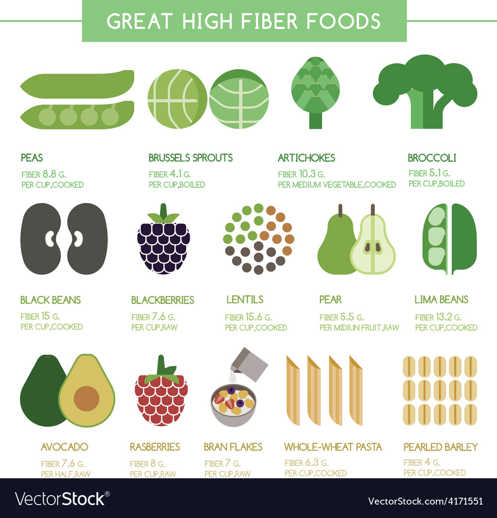 Great high fiber foods vector | Price: 1 Credit (USD $1)