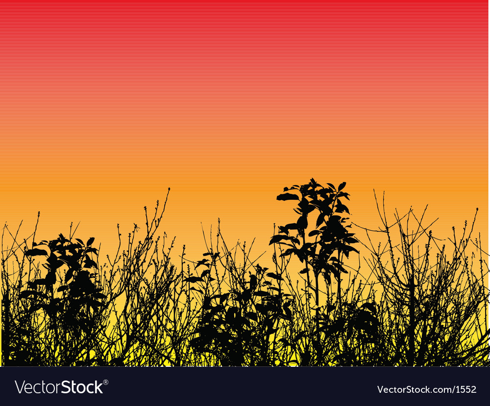 Foliage design vector   Price: 1 Credit (USD $1)
