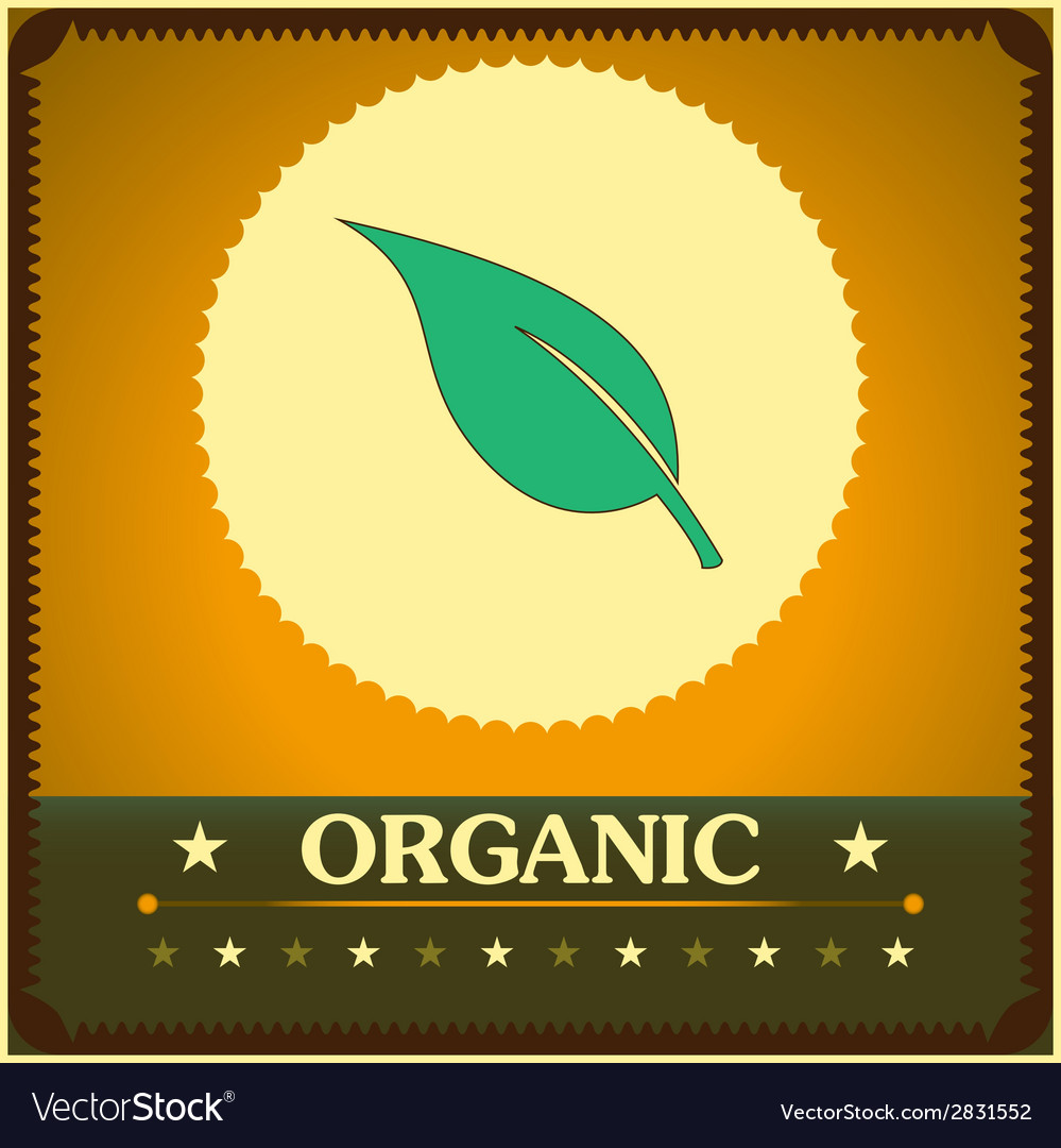 Vintage style organic poster vector | Price: 1 Credit (USD $1)