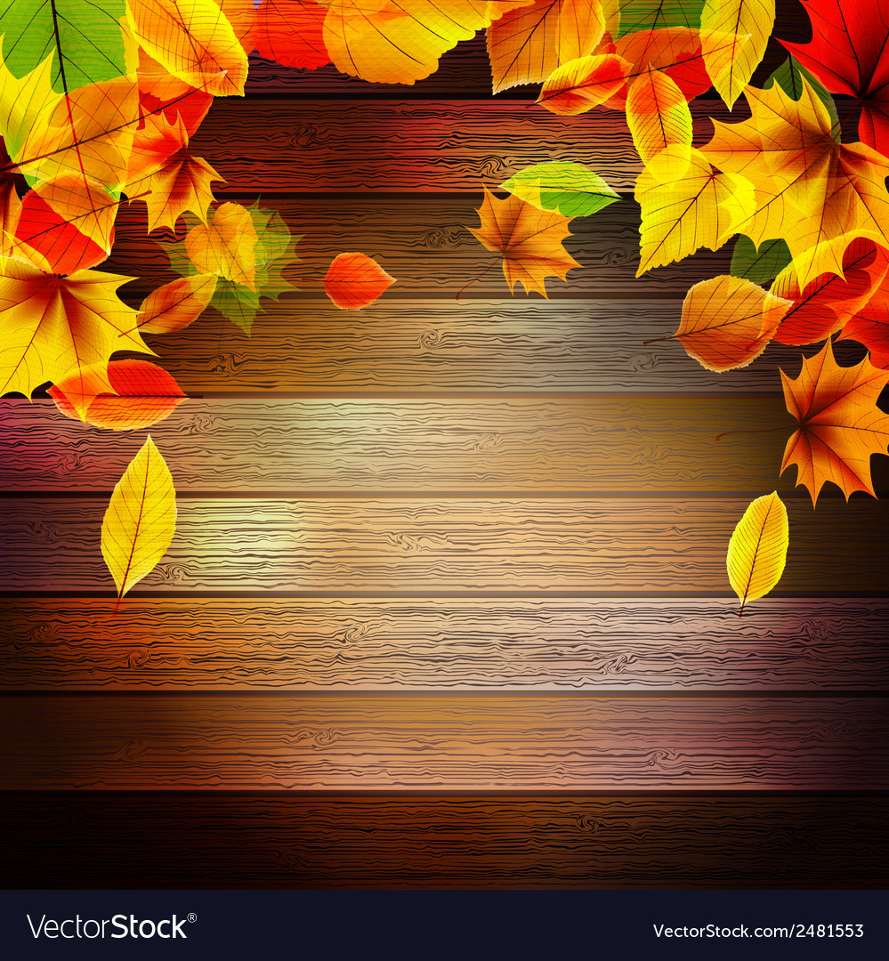 Yellow wet autumn leaves on the background eps10 vector   Price: 1 Credit (USD $1)