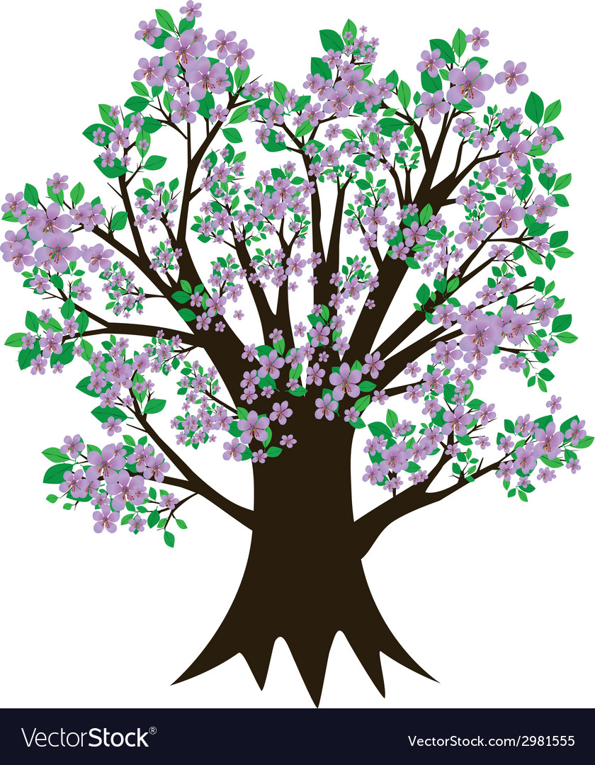 Tree with blossom and leaves vector | Price: 1 Credit (USD $1)
