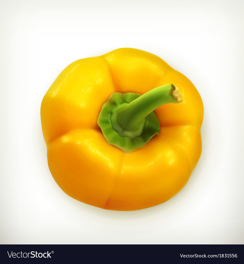 Bell pepper vector | Price: 1 Credit (USD $1)