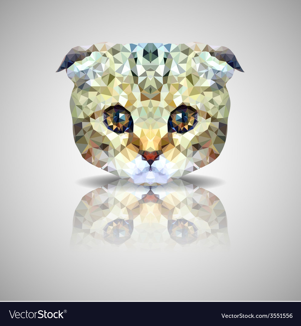 British lop-eared cat polygon geometric vector | Price: 1 Credit (USD $1)