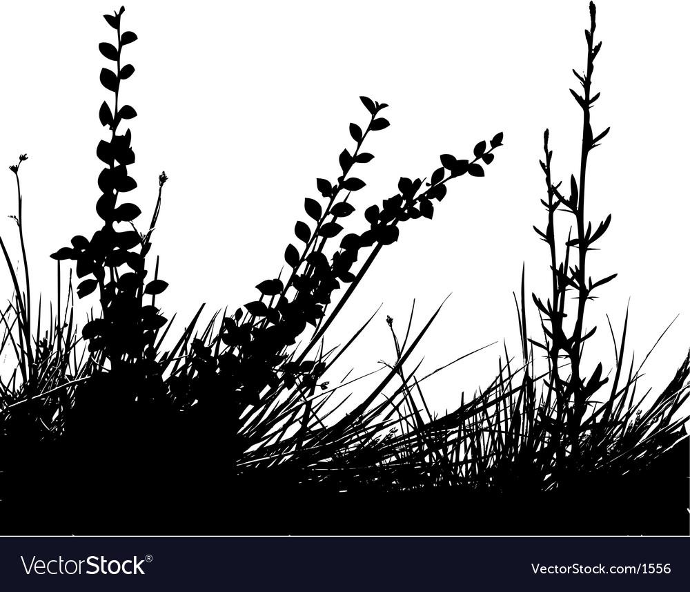 Foliage design vector | Price: 1 Credit (USD $1)