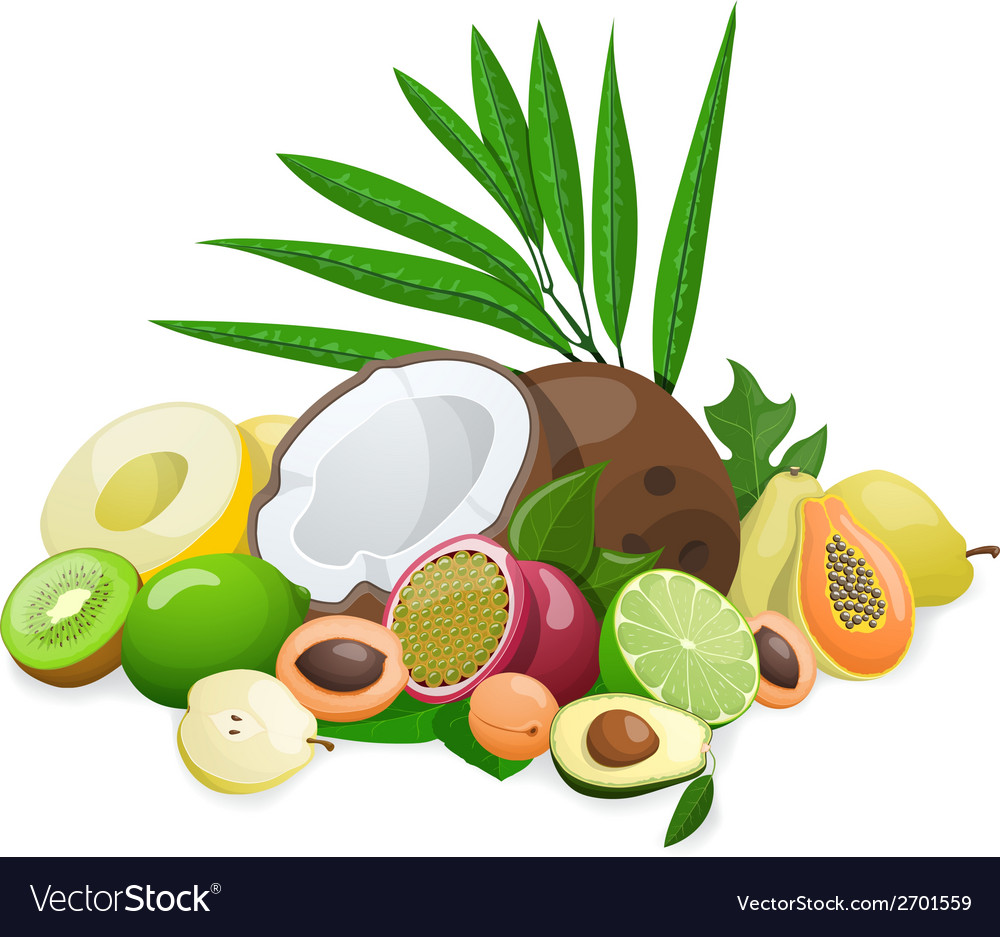 Big group of exotic fruit vector | Price: 1 Credit (USD $1)