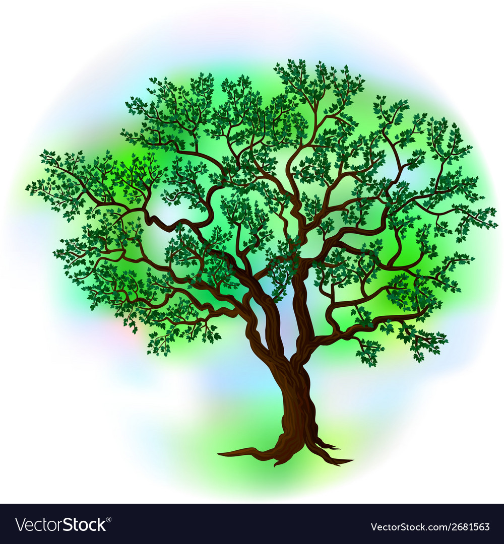 Summer tree vector | Price: 1 Credit (USD $1)